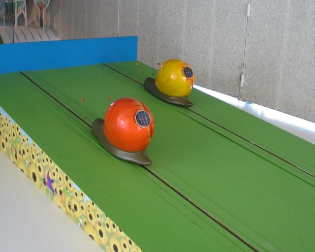 snail_03s